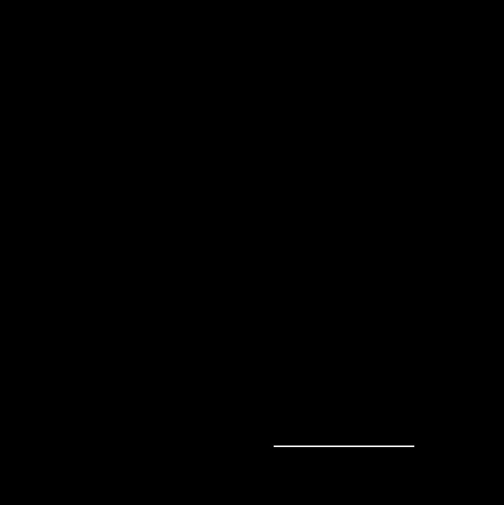 Spaceworks Tacoma logo